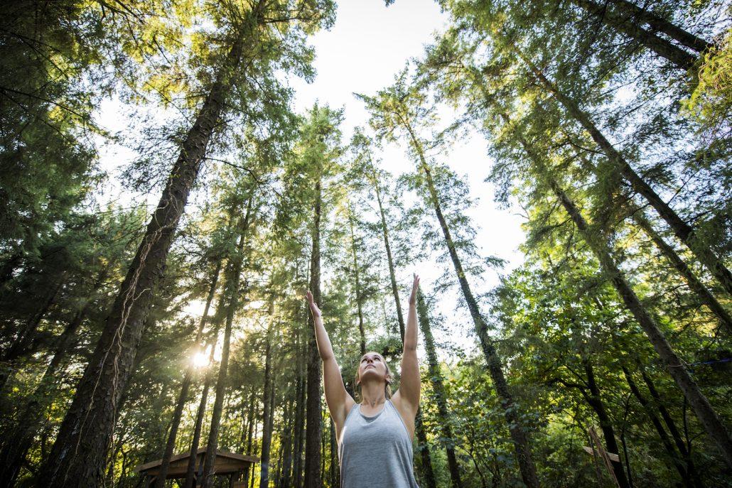 woodland yoga retreat UK