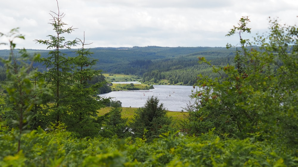 Kielder Water wild places uk and England