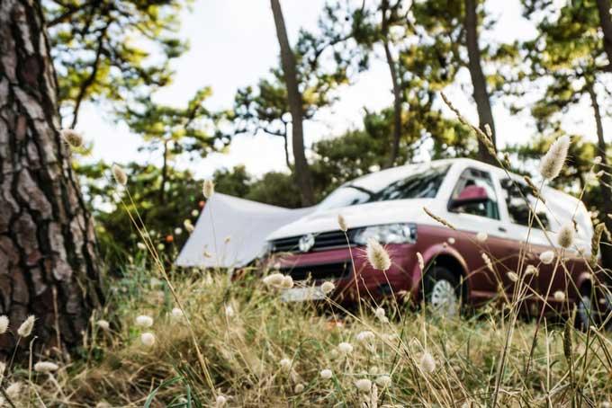 small campervan base vehicle van life
