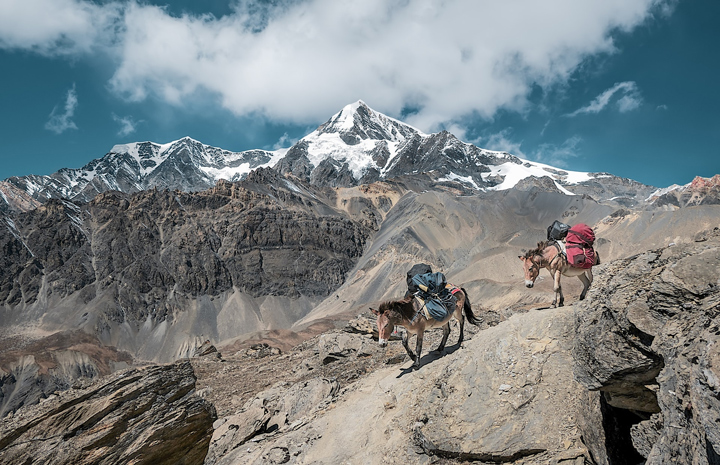 Trekking the Tour du Mont Blanc self guided