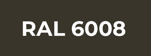 RAL 6008