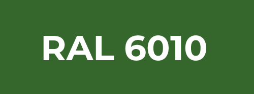 RAL 6010