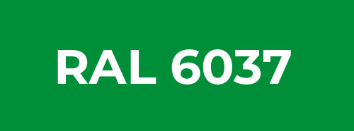 RAL 6037
