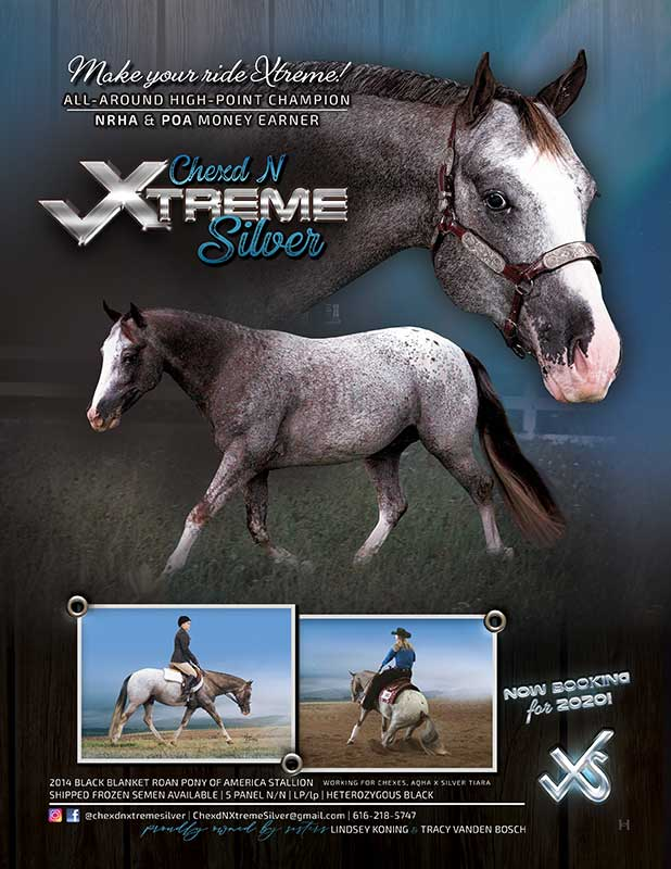 Chexd N Xtreme Silver