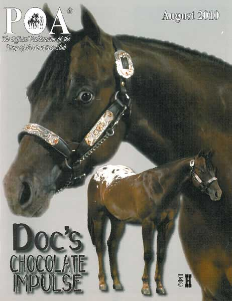 Docs Chocolate Impulse