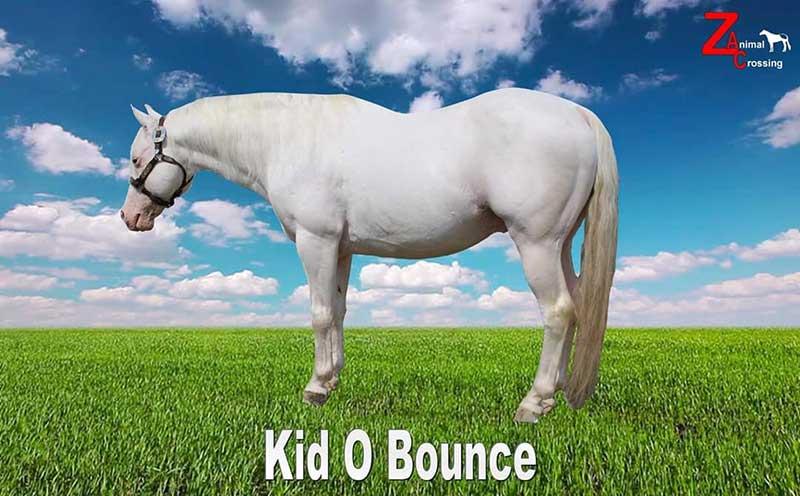 Kid O Bounce