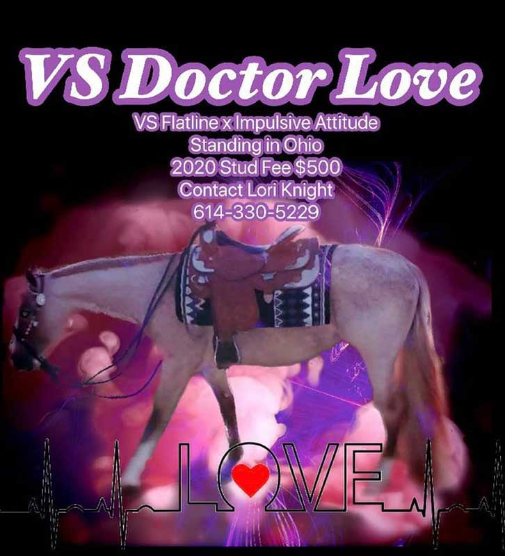 VS Doctor Love