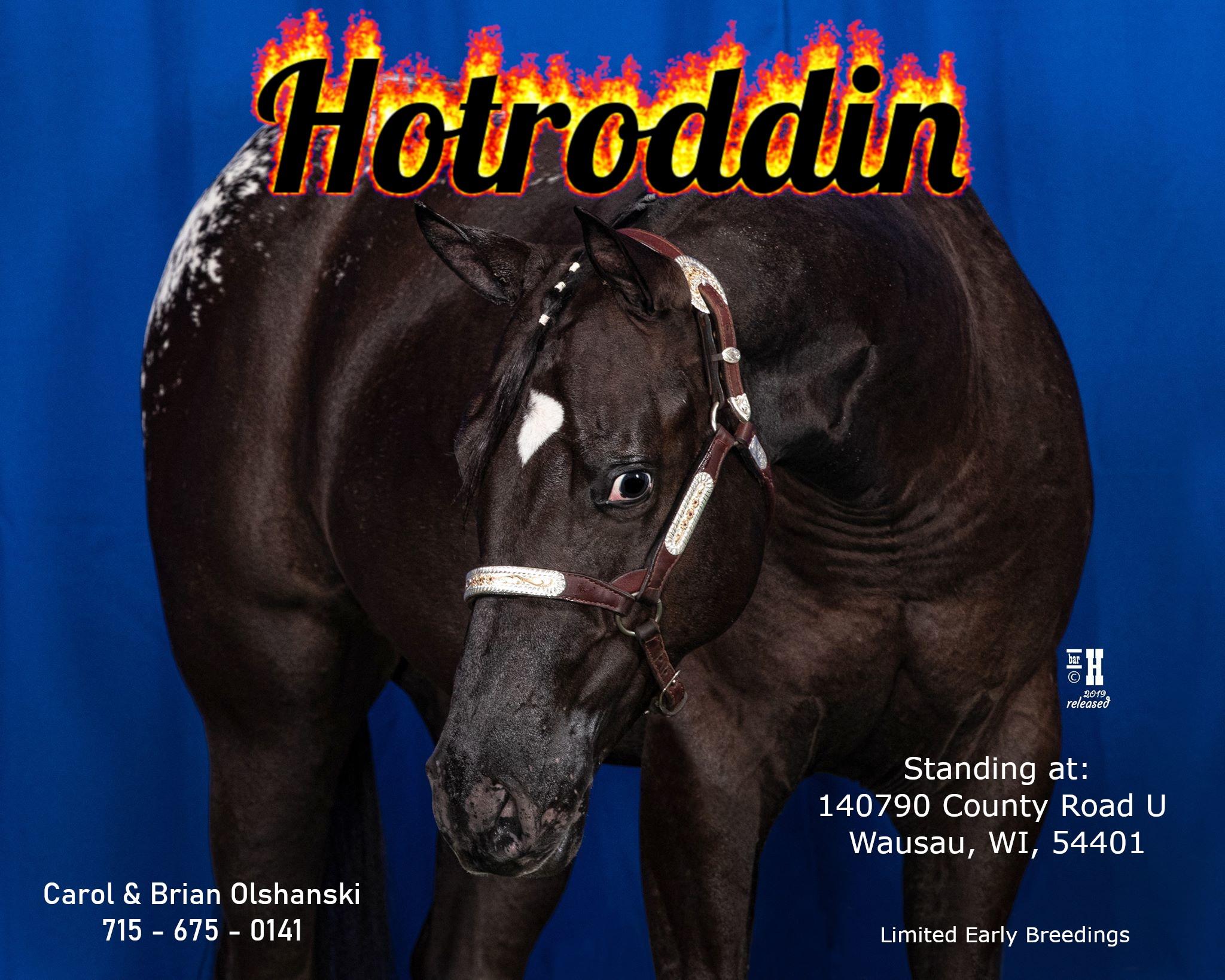 Hotroddin - Purchased