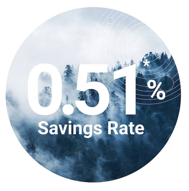 image of 0.51% and the words savings rate