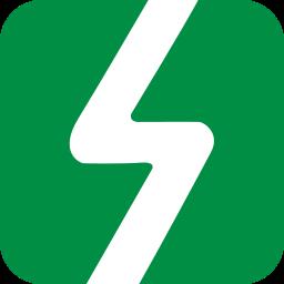 Salesbolt Icon