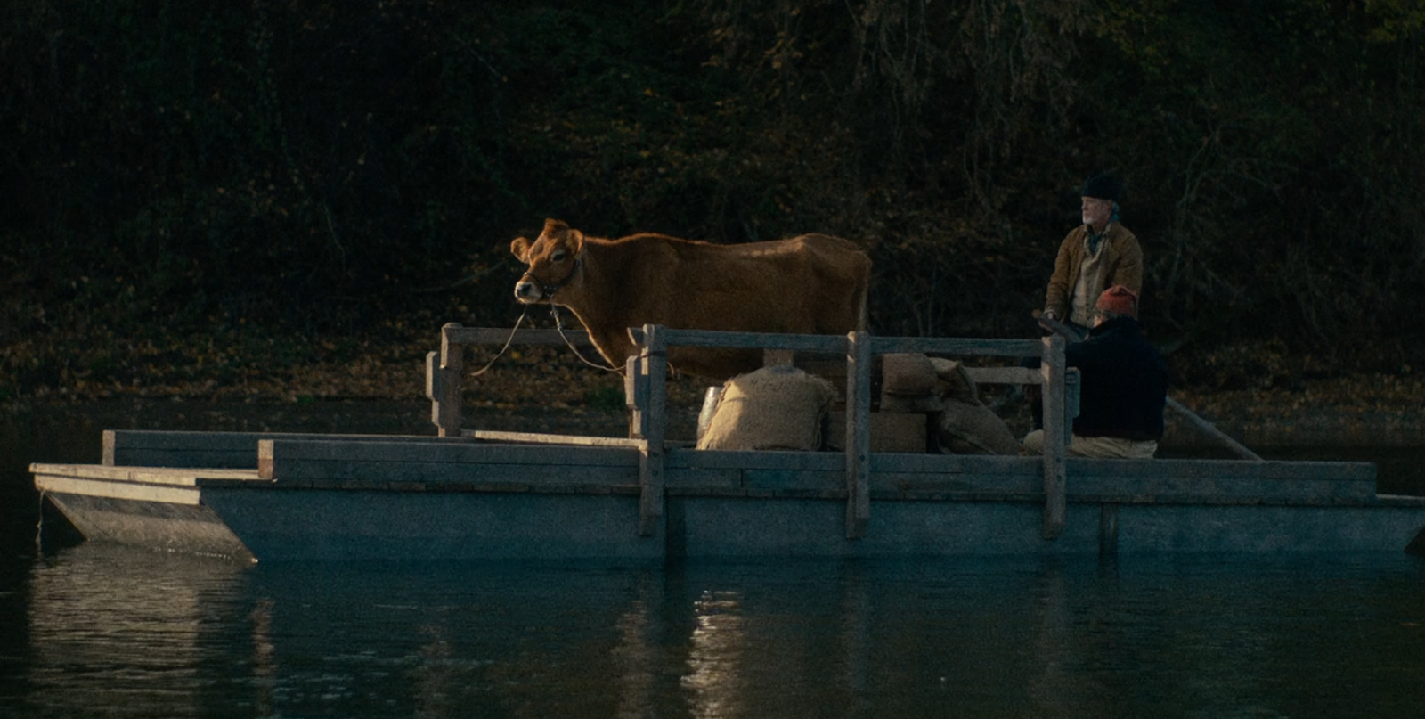 "The titular cow in Kelly Reichardt's film ""First Cow"""