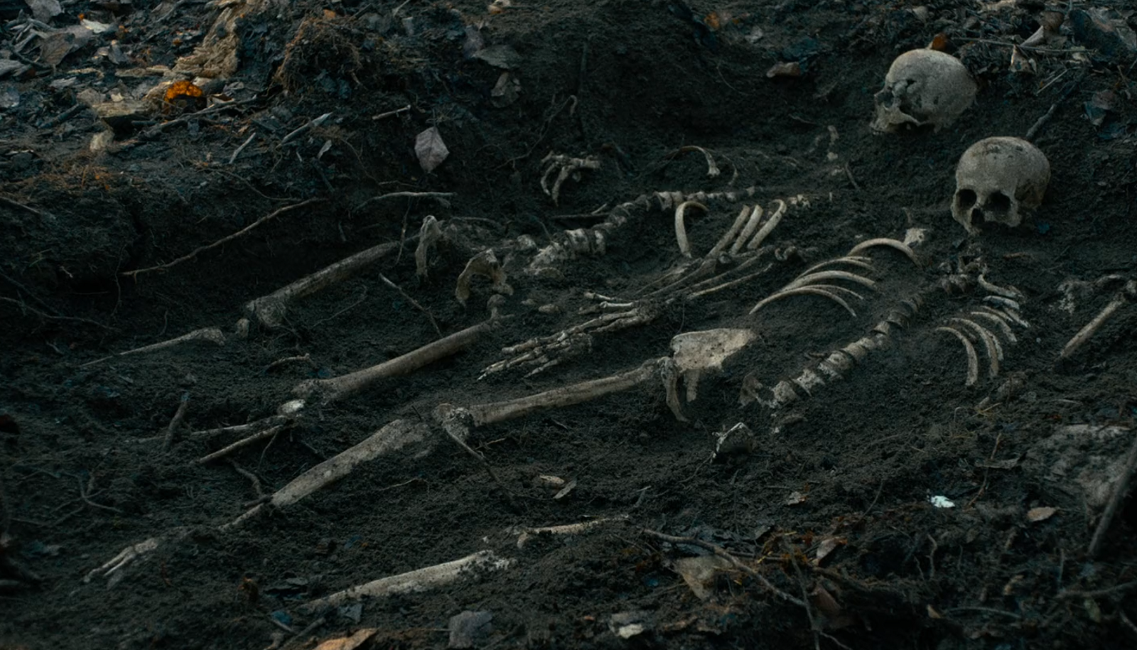 "Two skeletons in Kelly Reichardt's film ""First Cow"""