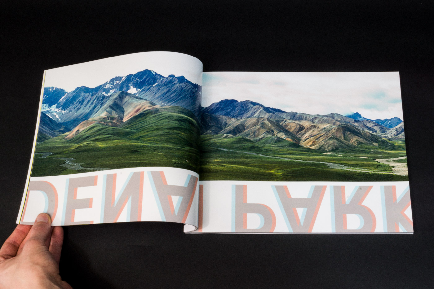"Photo spread - ""denali park"""