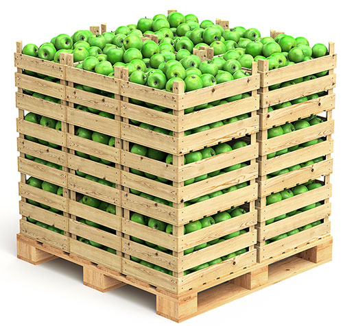 fruit and vegetable packing solution