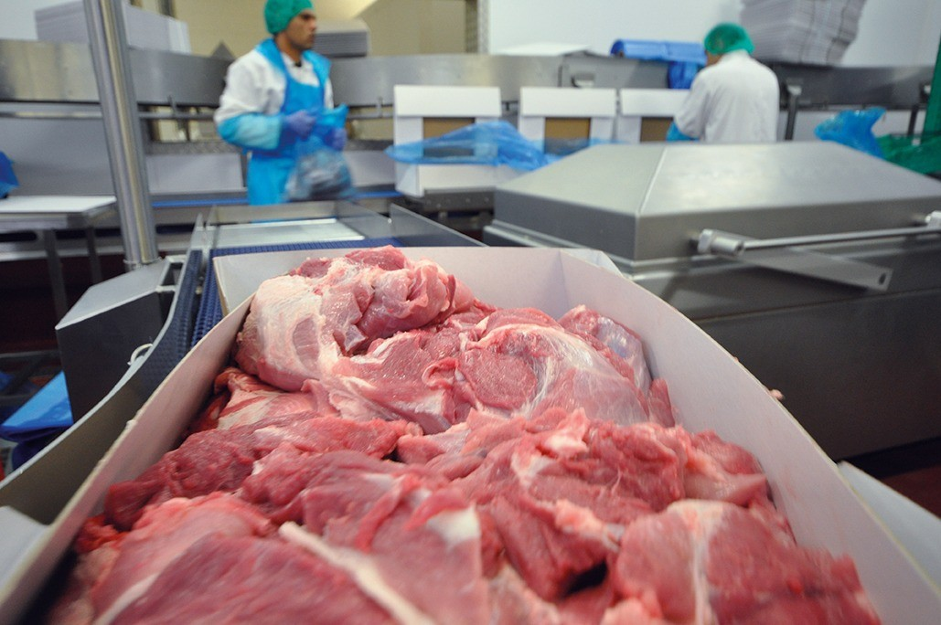 image showing box of cut and trimmed pork at processing plant