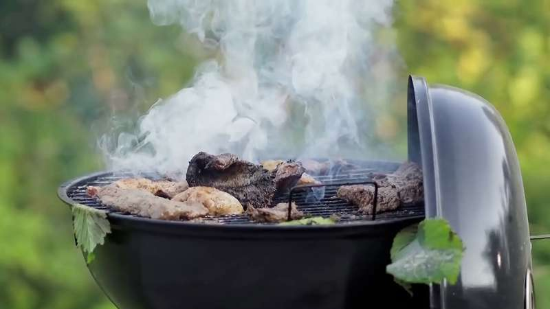 Know the science that takes place while grilling meat