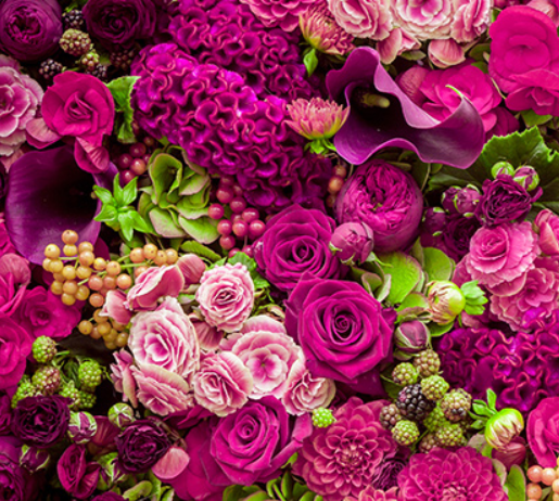 Flower Farming Software