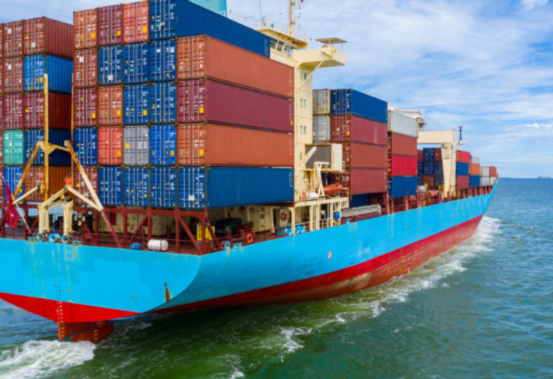 SENASA export documents for fresh produce fruit & vegetable exporters