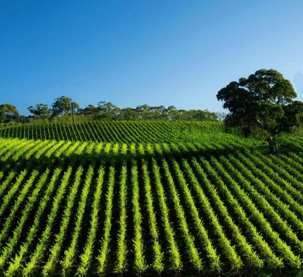 farm management software