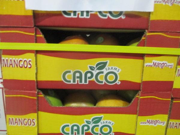 Mango packing & mango processing quality control