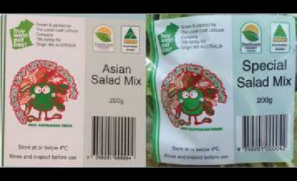 Salad & loose leaf packing of mixed salad & lettuce