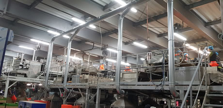 Onion packing processing storage sales quality reduce waste