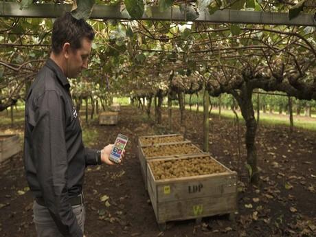 fresh produce bar-code traceability