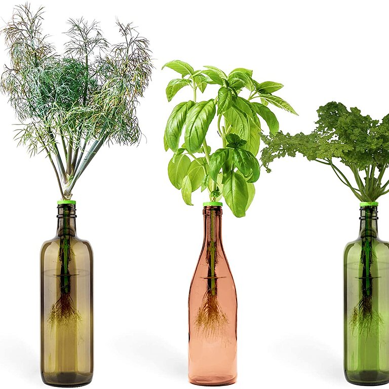 https://www.eatingwell.com/article/7884325/the-best-herb-garden-kits-for-every-type-of-gardener-even-if-you-kill-every-houseplant-you-ve-ever-met/814vqxr5dll-_ac_sl1500_/