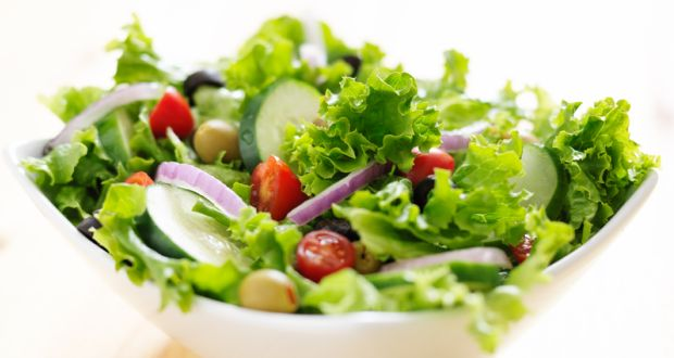 Salad manufacturing & processing for food service