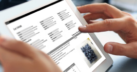 Quality Control Tailored for the Produce Industry