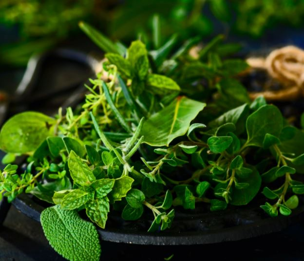 Herb drying, packing, sales