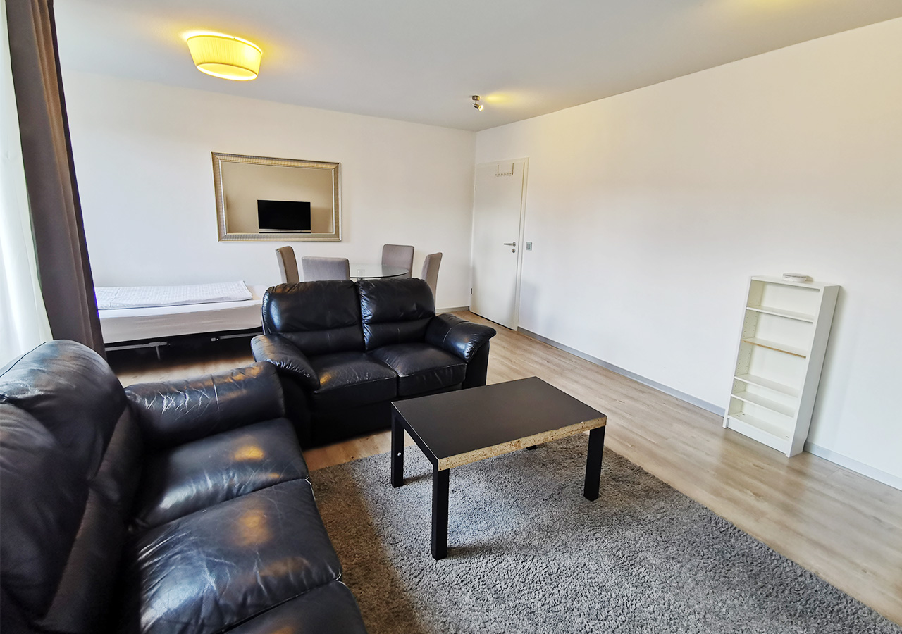 Living room and dining area (2)