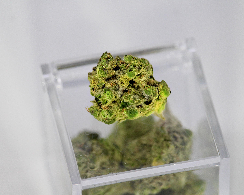 cannabis nug