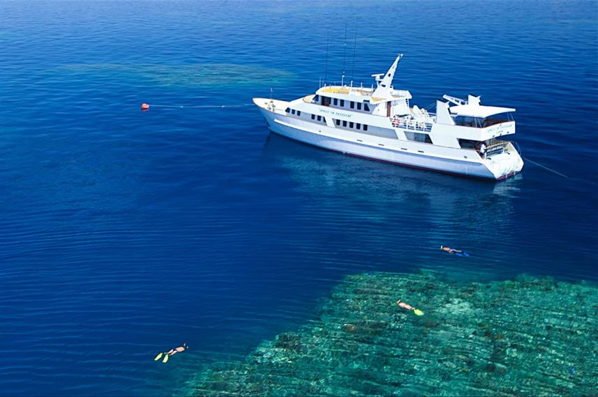 A liveaboard to the Great Barrier Reef with the Spirit of Freedom