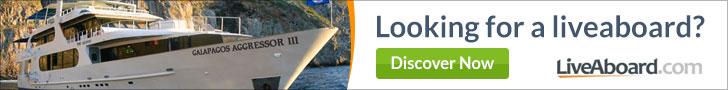 Liveaboard.com banner - Looking for a liveaboard?