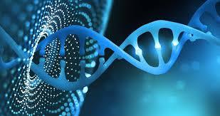 Lo que dice el primer genoma del coronavirus colombiano | Redib ...