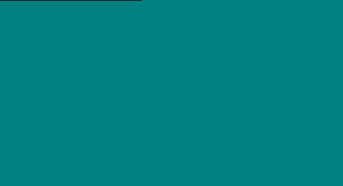 Rhino Grip logo