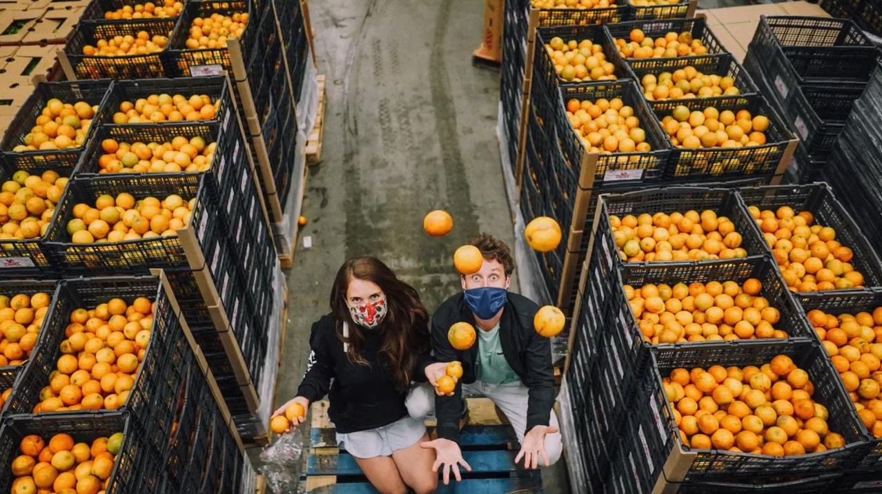les fruits et légumes sauvés