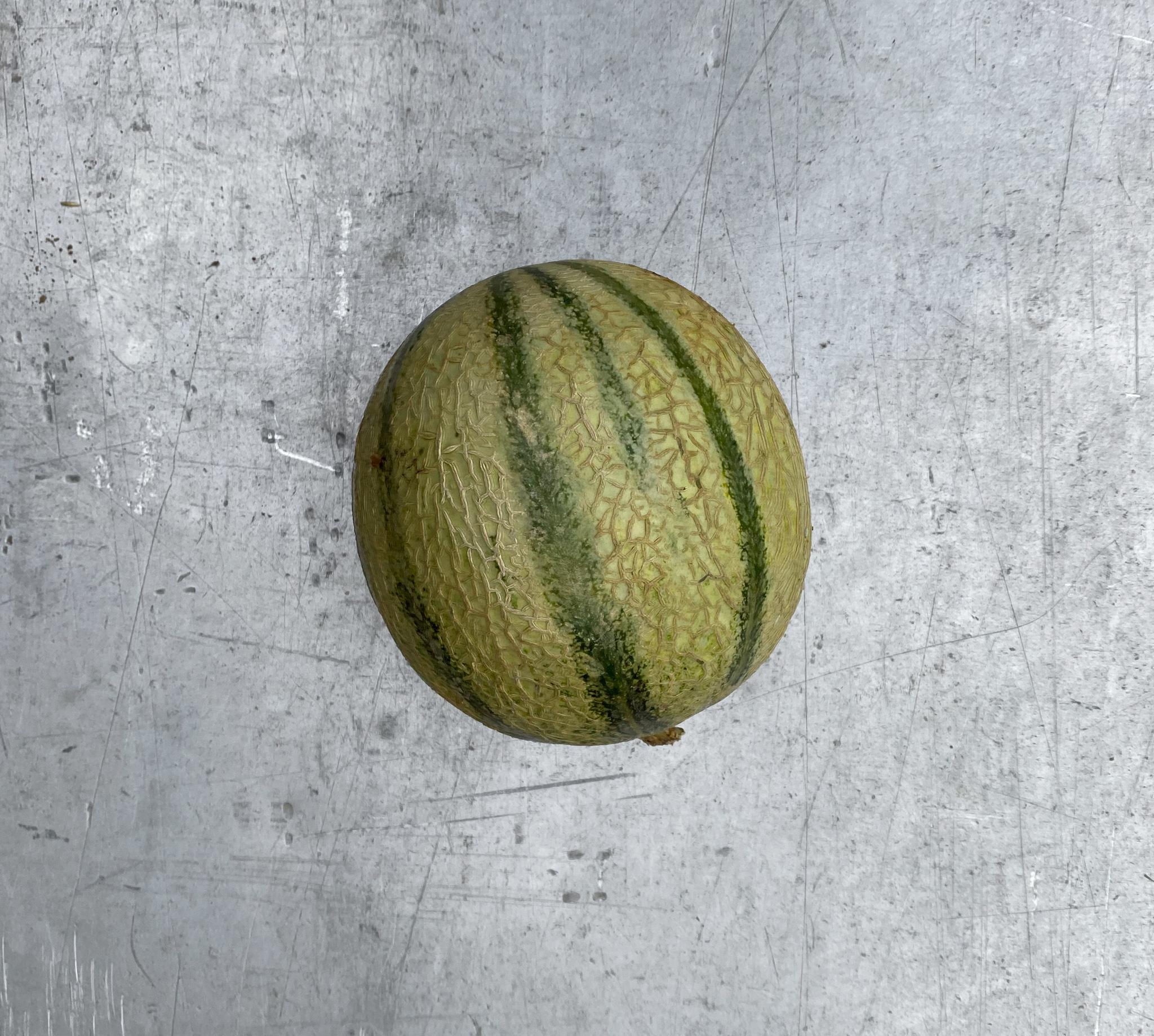 Melon Francais