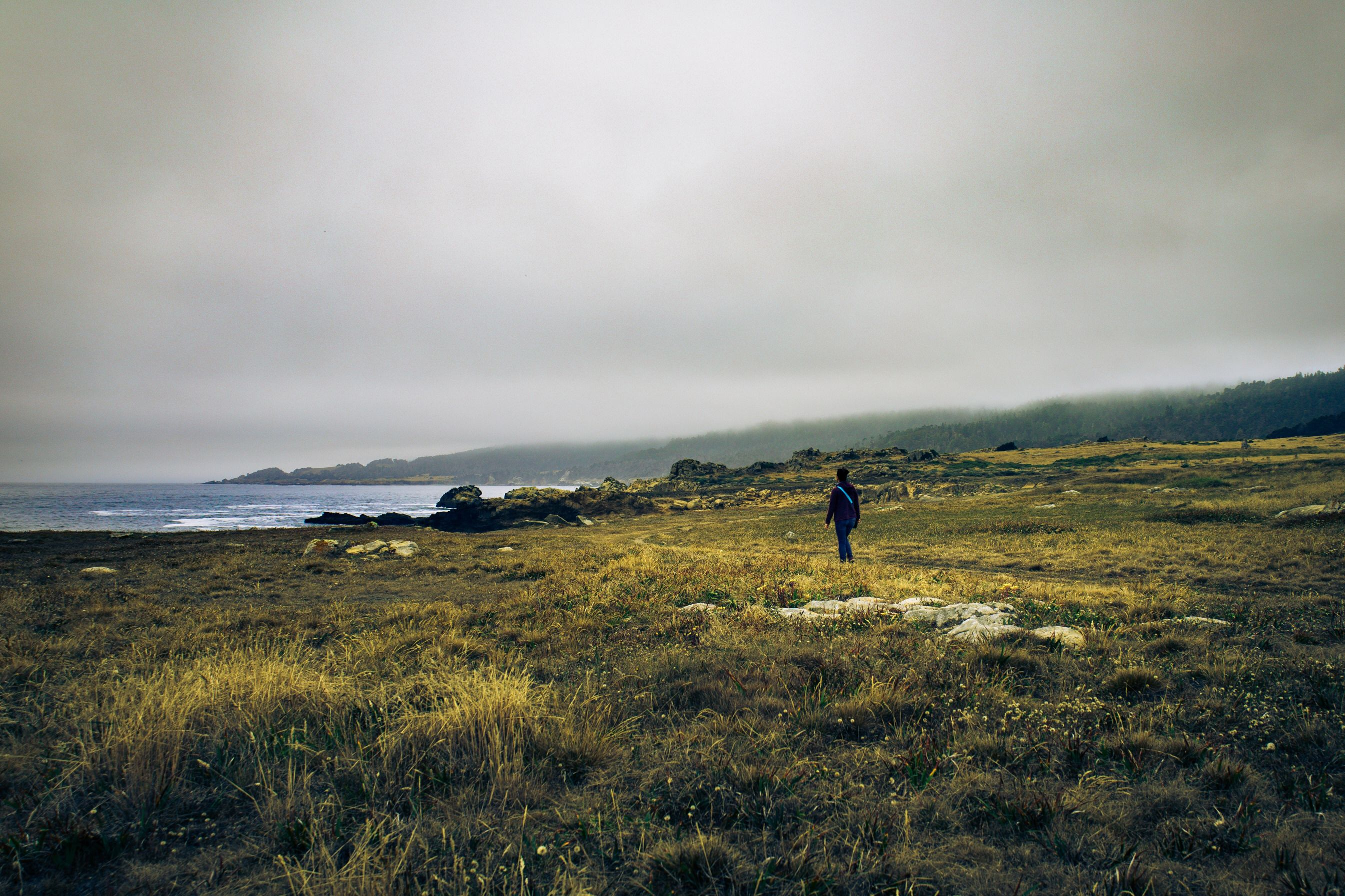 Alone on the Foggy Coast