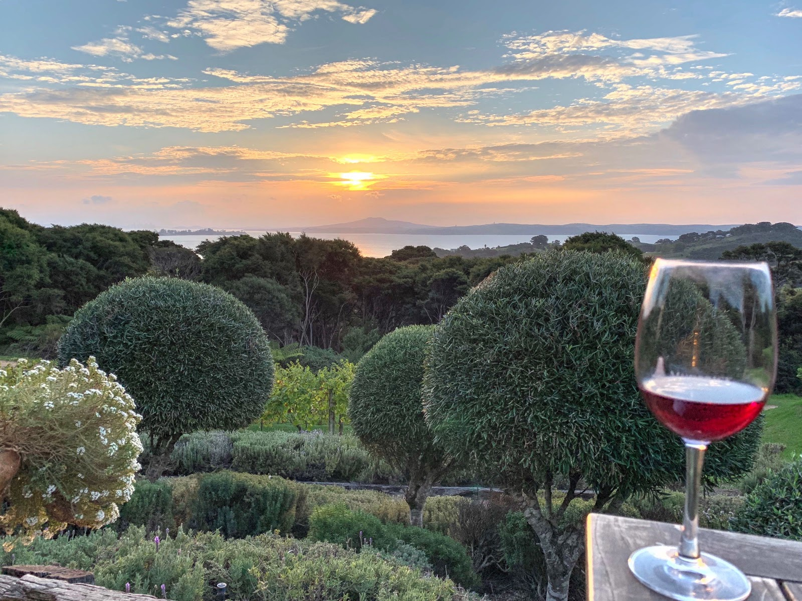 Trips to Auror's New Zealand office, particularly Waiheke (AKA wine island) are an added bonus!