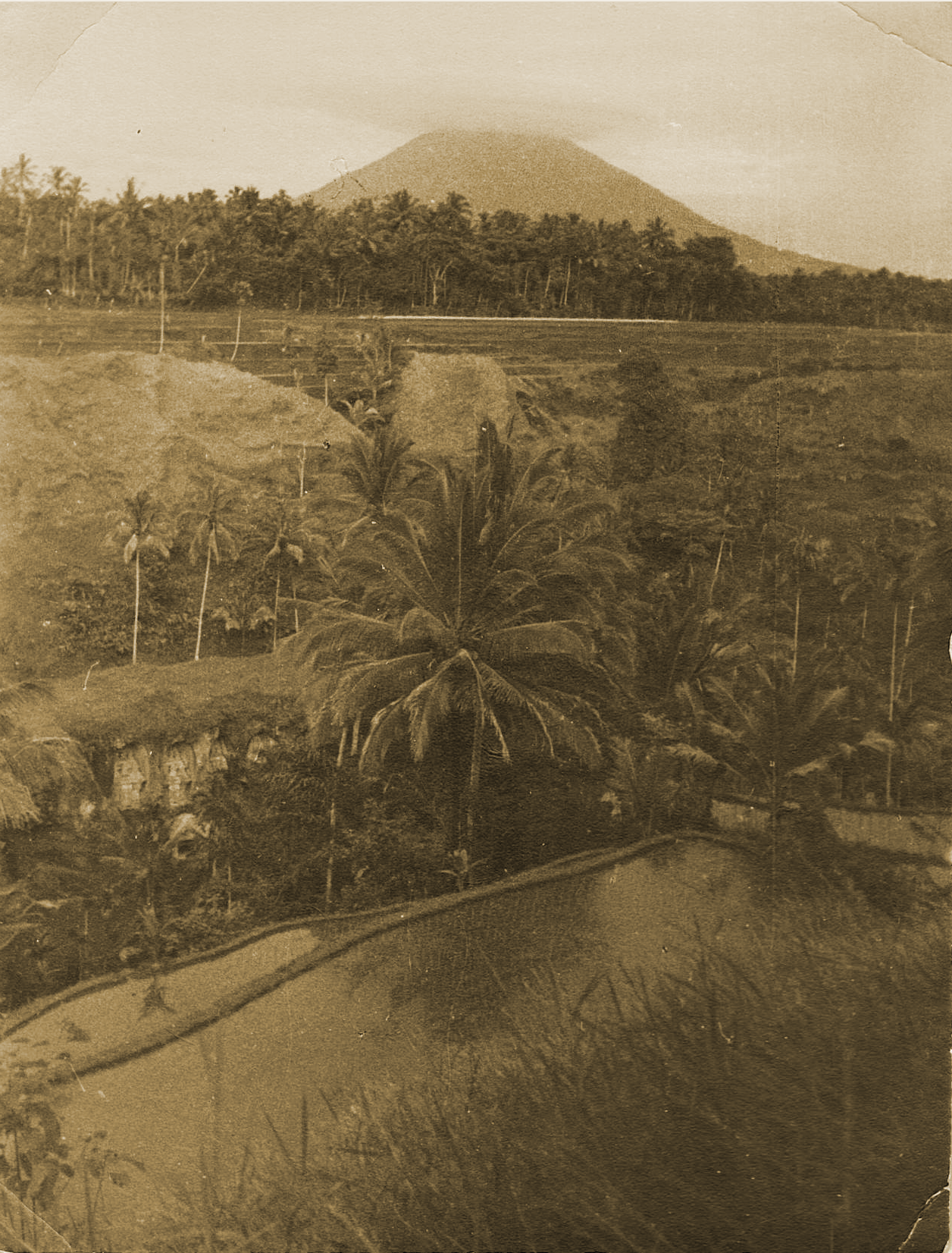 Arthur Fleischmann, Rice Fields in Tampak Siring with Gunung Agung in the Background, gelatin silver print, 16 x 21.1 cm.