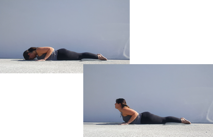 Yoga Cobra pose - Bhujaungasana