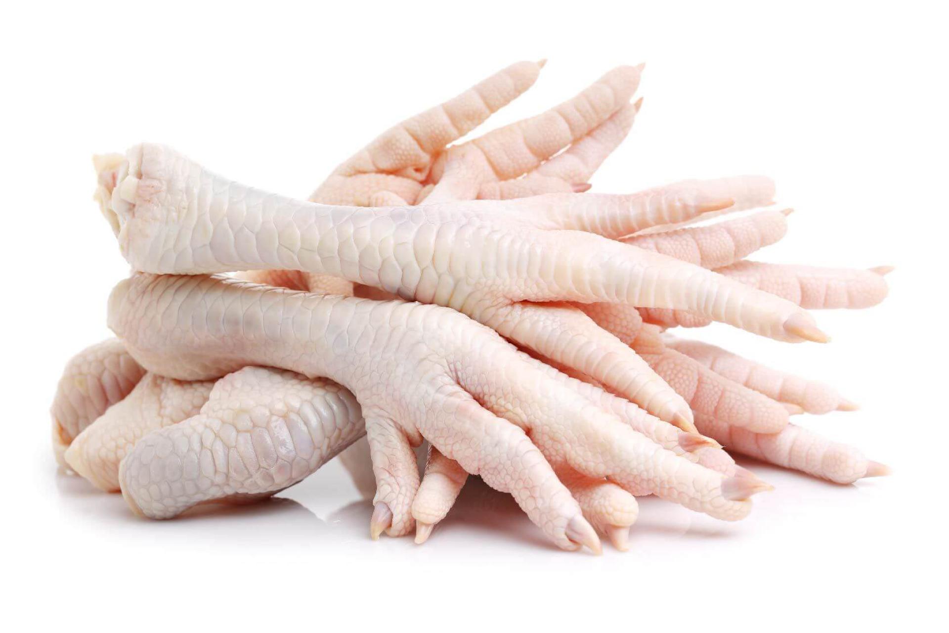 Benefícios do pé de galinha para a saúde