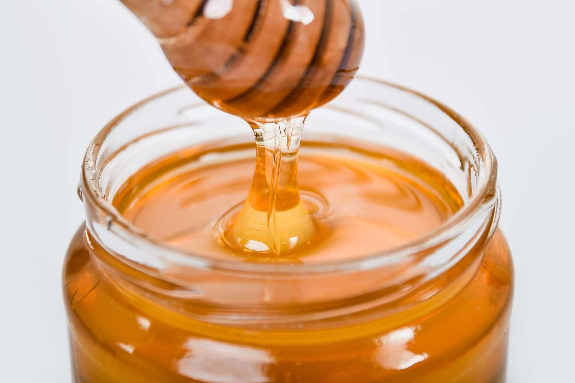 O mel faz parte de uma dieta carnívora?