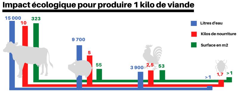 Graphique représentant l'impact écologique production d'un kilo de viande