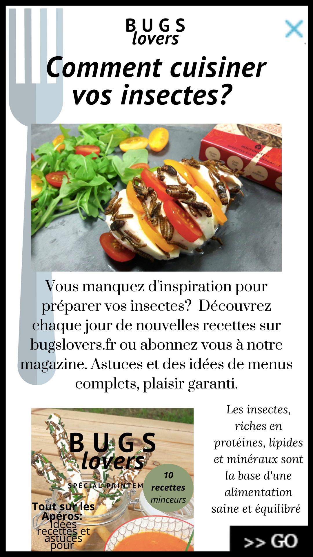Fausse article journal cuisiner insecte design fiction imaginaire