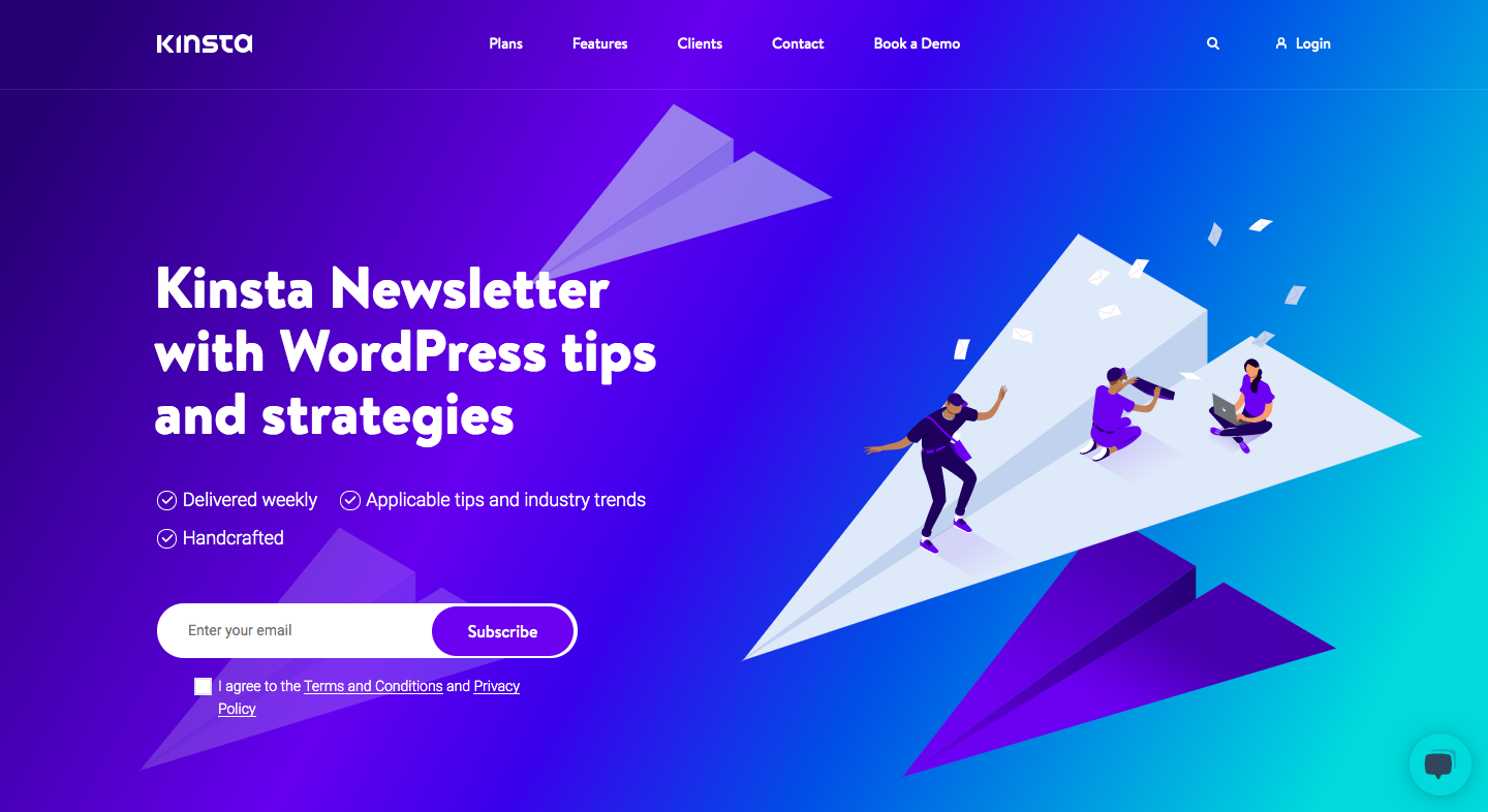 Kinsta Newsletter Page