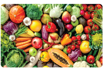 cold room cooler for fruits and vegetables storage