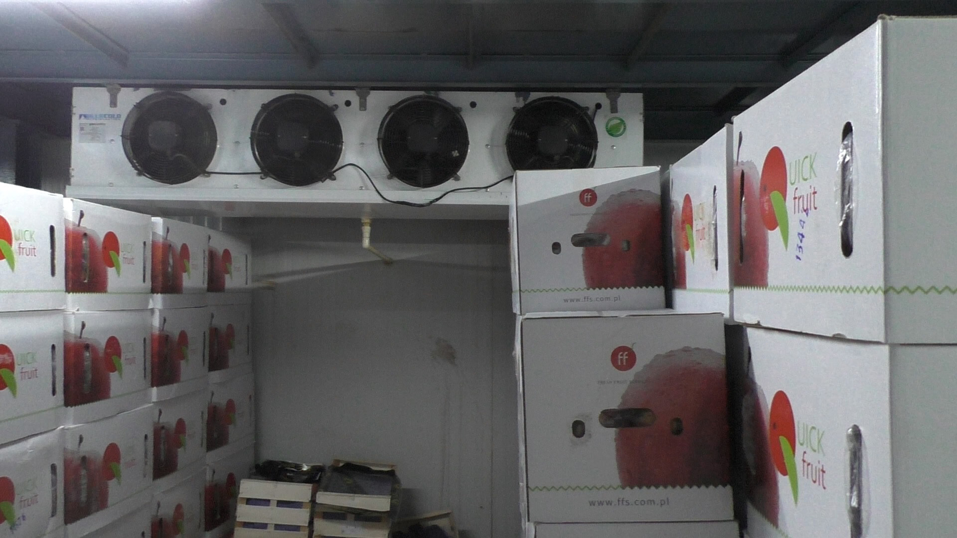 Fruits and vegetable cold room
